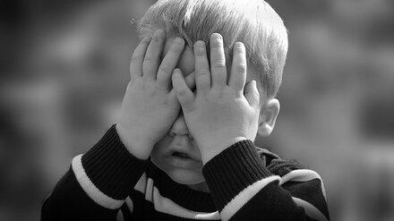 В Воронеже мать отказалась от объявленного в розыск трёхлетнего сына