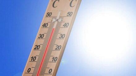 Спасатели напомнили воронежцам об опасном усилении жары в выходные