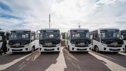 На три популярных воронежских маршрута выйдут сразу 12 новых автобусов