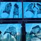 Воронежцам показали фото поражённых ковидом на 96% лёгких