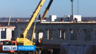 Школу-долгострой в Грибановском районе завершат в 2019 году