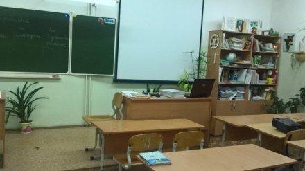 В воронежской гимназии на 10-летнюю девочку упал шкаф
