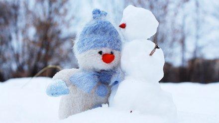 В начале новой рабочей недели жителей Воронежской области ждёт резкое похолодание