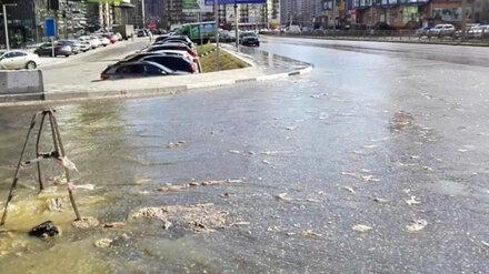 Власти опровергли вину воронежцев в появлении зловонных рек на Шишкова