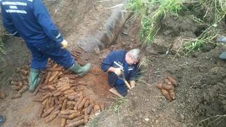 В Воронежской области нашли огромный склад старинных боеприпасов
