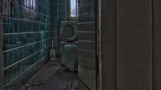 В Воронеже женщина нашла мужа мёртвым в туалете