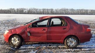 В Воронежской области иномарка вылетела в кювет: пострадали трое