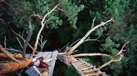 Воронежский художник вырежет из железа пятиметровую «избушку» из сказок