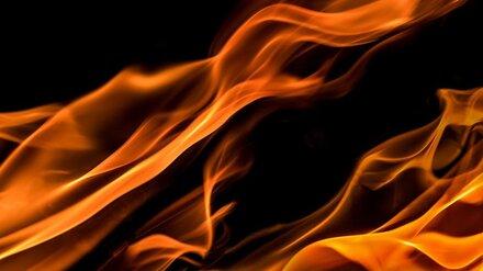 В Воронежской области мужчина поджёг знакомого ракетницей