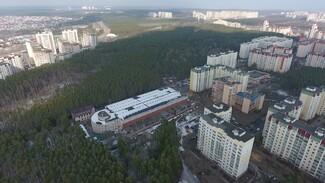 Площадь памятника природы «Северный лес» в Воронеже увеличат на 4-5 га