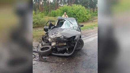 В Воронежской области при лобовом столкновении двух авто пострадали 4 взрослых и ребёнок