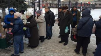 Воронежцев попросили о помощи в спасении бездомных от коронавируса