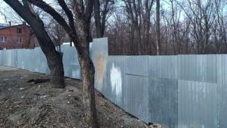 На границе с Центральным парком в Воронеже вырубят деревья под строительство