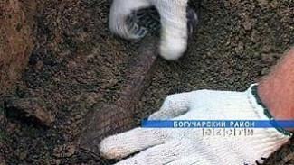 Злоумышленника-гастролера задержали сотрудники Ленинского ОВД