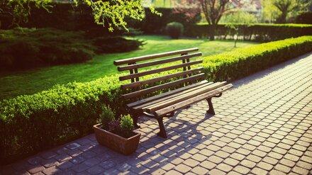 Воронежцы назвали самый любимый парк города