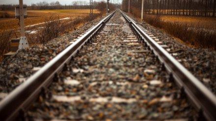 Пассажирский поезд сбил в Воронежской области 17-летнего подростка