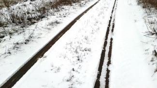 На железной дороге в Воронежской области нашли изувеченное тело женщины