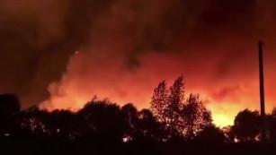 «Раз – и всё сгорело». Как Воронежская область пережила огненный шторм