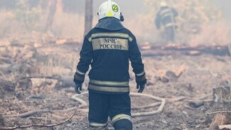 В Воронежской области потушили последний крупный пожар