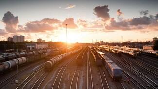 МВД установило личность влетевшего в поезд водителя в Воронежской области