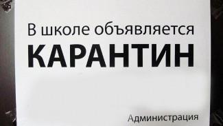 В Воронеже на карантин по гриппу и ОРВИ закрылись ещё 5 школ