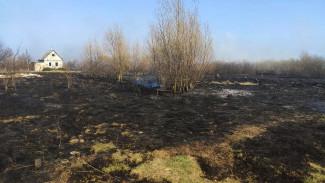 В Воронежской области за сутки потушили более 100 ландшафтных пожаров