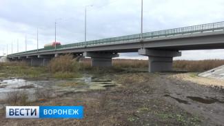 После масштабной стройки моста в Воронежской области река превратилась в болото