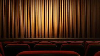 В воронежских театрах и кинотеатрах увеличат число зрителей