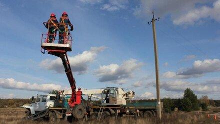 «Россети Центр Воронежэнерго» с начала года  отремонтировали более 1700 км ЛЭП