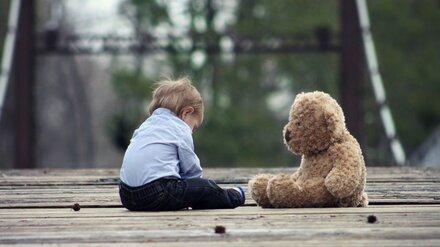 В Воронеже после истории с избиением 2-летнего мальчика проверят чиновников и полицейских