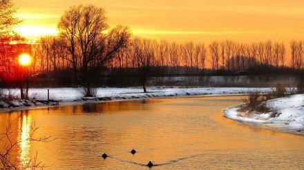 Тёплая зима в Воронеже побила первый температурный рекорд