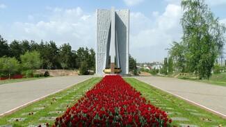 В Воронеже мемориальный комплекс «Песчаный лог» стал объектом культурного наследия
