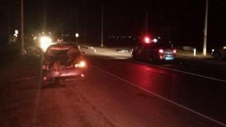 Под Воронежем машина сбила трёх человек, перебегавших дорогу: двое погибли