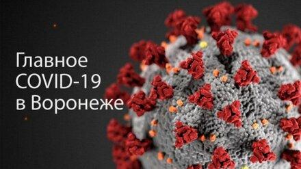 Воронеж. Коронавирус. 26 января