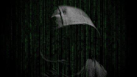 В рассылке о вспышке дизентерии на военном полигоне под Воронежем обвинили хакеров