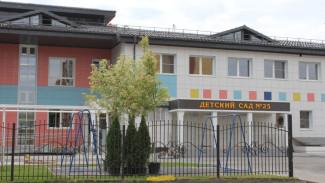 «Воронежэнерго» обеспечило электронабжение школ и детских садов к новому учебному году