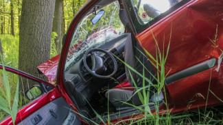 В воронежском селе женщина погибла в ДТП с деревом
