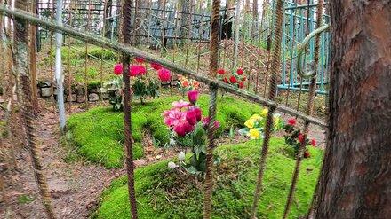 Смертность в Воронежской области превысила рождаемость почти в два раза