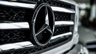 В Воронежской области водитель потребовал 500 тысяч от УК за упавшую на Mercedes ветку