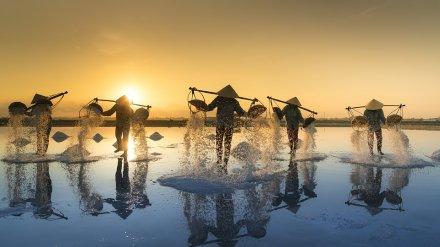 Губернатор порекомендовал воронежским предпринимателям вкладываться во Вьетнам