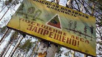 В 4 районах Воронежской области объявлен самый высокий - 5 класс горимости