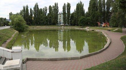 В Воронеже завершилась реконструкция сквера «У озера»