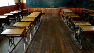 Ещё одна сельская школа в Воронежской области целиком ушла на дистанционку из-за COVID