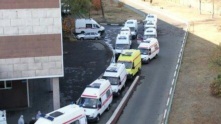 Впервые в Воронежской области выявили более 250 случаев коронавируса