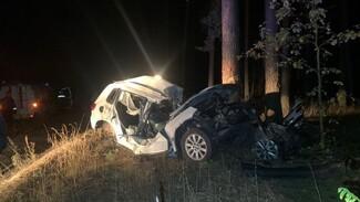 В Воронежской области в ДТП разбилась женщина и пострадали 4 человека