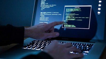 Хакера из Воронежской области осудили за атаки на госсайты Сибири и Дальнего Востока