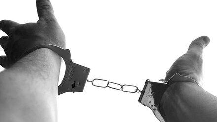 Под Воронежем узбека-нелегала поймали на взятке полицейскому