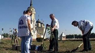 Петровскую набережную озеленили