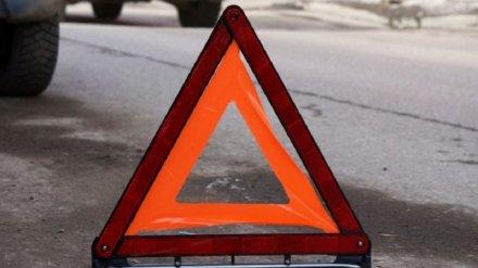 На трассе в Воронежской области легковушка влетела в грузовик: погибли два человека