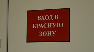 Около 1,3 тыс. воронежцев оказались в больницах с коронавирусом
